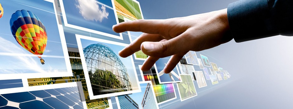 Web Application & Software Development