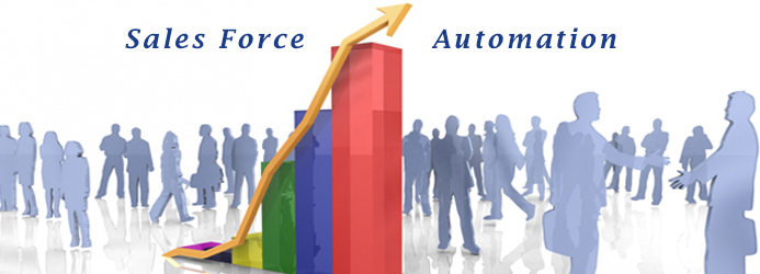 Software development in Sales Force Automation